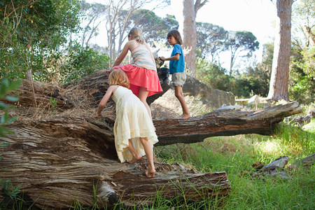 6 7 year old: Children climbing over tree trunk LANG_EVOIMAGES