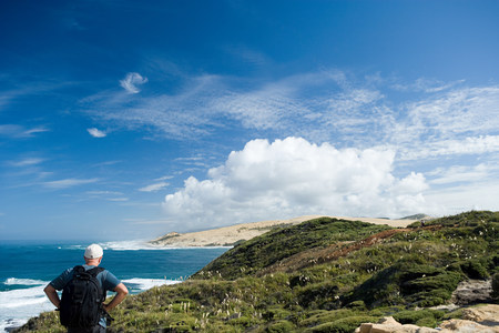 hiker looking towards inlet of Hokianga Harbour LANG_EVOIMAGES