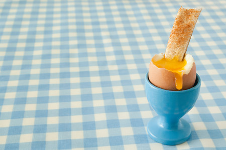 checker: Boiled egg and toast