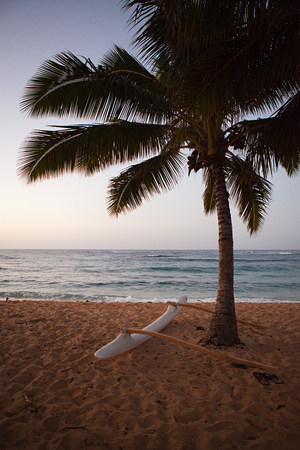 travel features: Outrigger canoe and palm tree on hawaiian beach