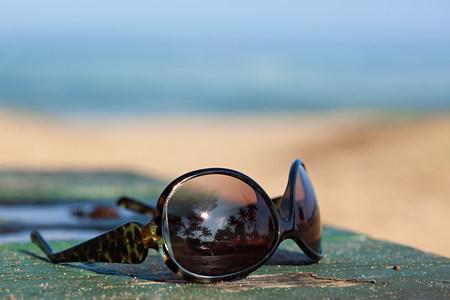 reflective: Sunglasses reflecting palm trees