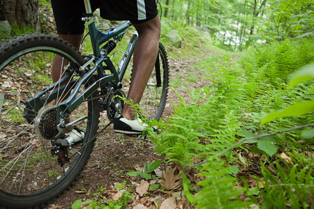 plants species: Ciclista maschio nella foresta