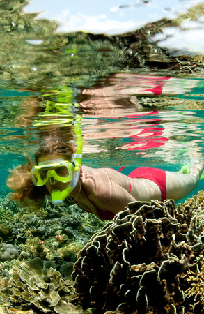 mirroring: Snorkeler on coral reef.