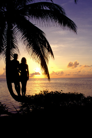 Silhouette of tree and couple.