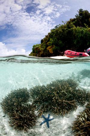 Overunder with island.
