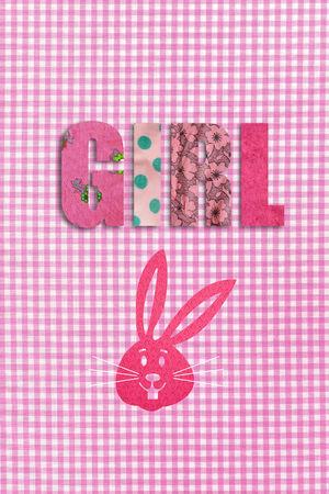 relaciones laborales: Diseño de gingham con la palabra niña y un conejo rosa LANG_EVOIMAGES