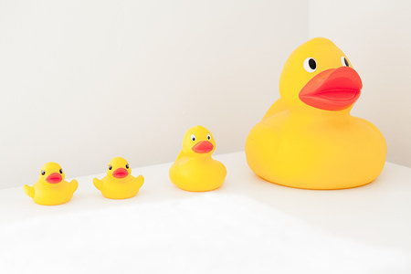 Large and small rubber ducks in a row LANG_EVOIMAGES