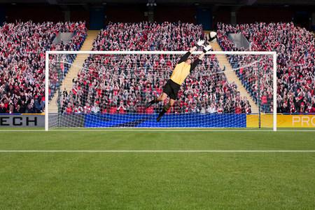 organised: Goalkeeper saving a goal LANG_EVOIMAGES