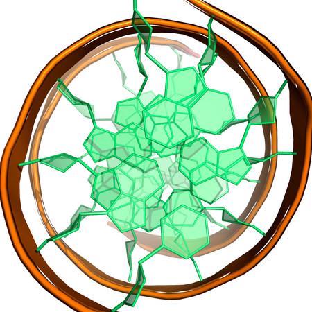 top animated: DNA molecule