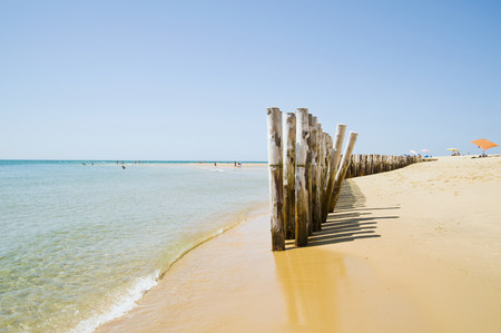 argent: Groynes on beach, Cap Ferret, Cote d Argent, France LANG_EVOIMAGES
