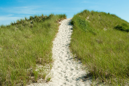 montauk: Sand path over dune, Montauk, Long Island