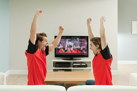 Two young men wearing football shirts watching football on television LANG_EVOIMAGES