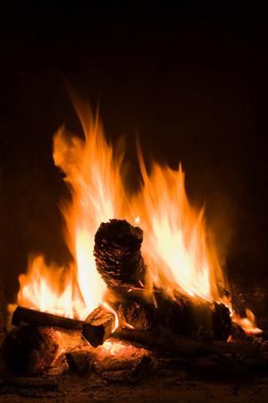 Logs burning in open fire