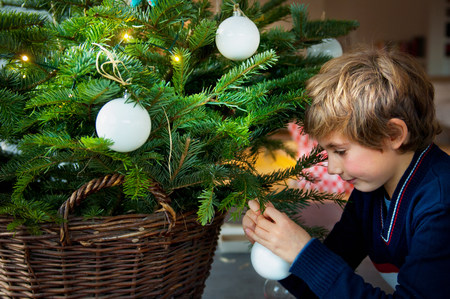 Boy decorating Christmas tree with baubles at home LANG_EVOIMAGES