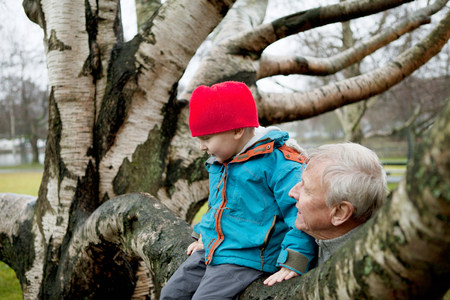 the sixties: Granfather and boy sitting on tree branch