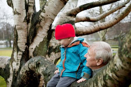 sit down: Granfather y niño sentado en la rama de un árbol