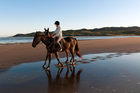 australasia: Young woman riding horse on beach