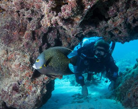 Diver on Rebreather