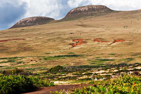 rapanui: Terevaka volcano,easter island,polynesia