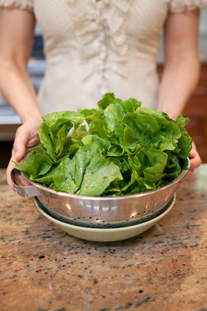 Mid adult woman holding colander of lettuce leaves