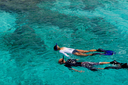 free diver: Snorkelers in the Caribbean Sea LANG_EVOIMAGES