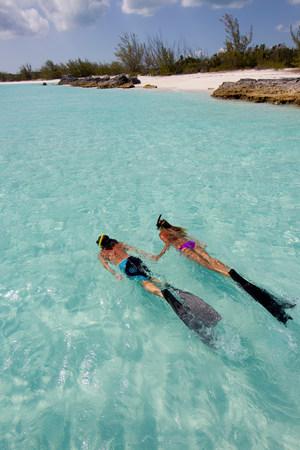 Snorkeling in the Atlantic Ocean LANG_EVOIMAGES