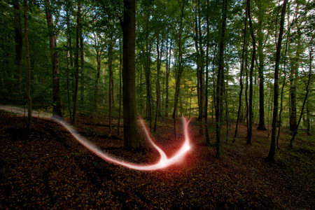 Light trail in a forest LANG_EVOIMAGES