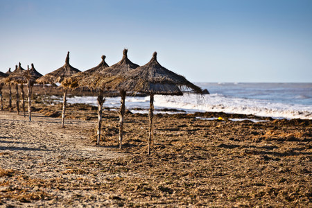 Parasols on beach on island of Djerba,Tunisia LANG_EVOIMAGES