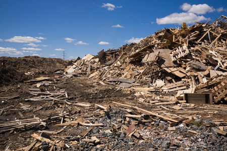 Pile of discarded wood at waste management site LANG_EVOIMAGES