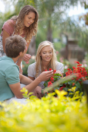 Couple shopping for plants in nursery