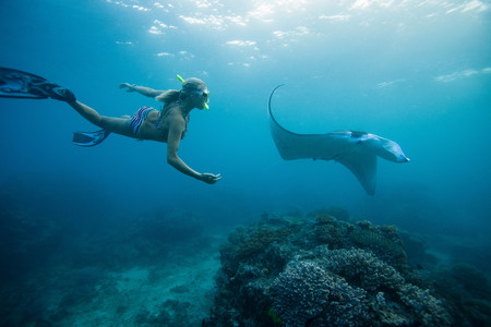 only 1 woman: Woman snorkeling with ray underwater LANG_EVOIMAGES