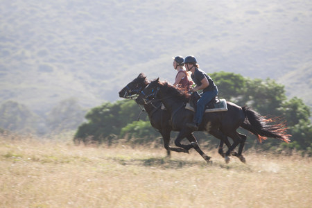 19 year old boy: Couple riding horses in rural landscape LANG_EVOIMAGES