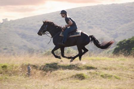 bonne aventure: Homme cheval dans un paysage rural