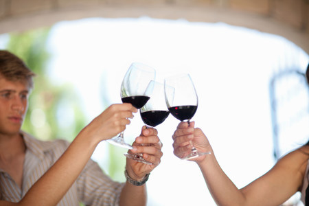 cropped out: Friends toasting with wine outdoors