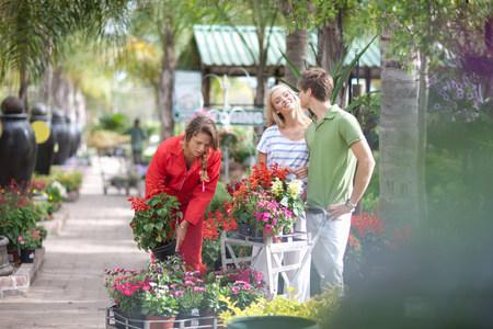 pubertad: Amigos, compras, plantas, cuarto de niños