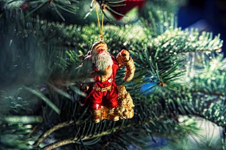 Santa Christmas ornament on tree