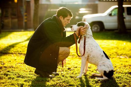 agachado: Hombre acariciando el perro en el parque LANG_EVOIMAGES