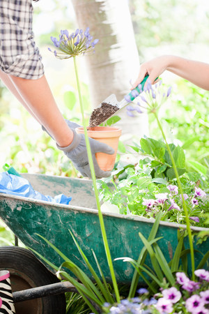 work related: Mother and son potting plants outdoors