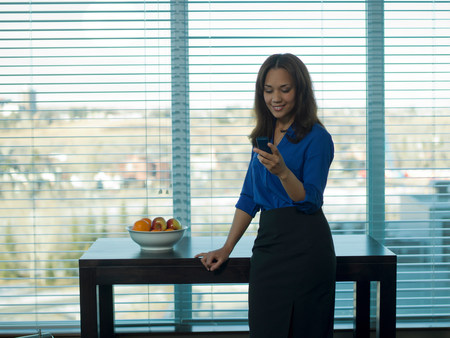 access point: Businesswoman using cell phone