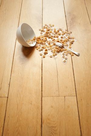 inconvenient: Bowl of cereal spilled on floor LANG_EVOIMAGES