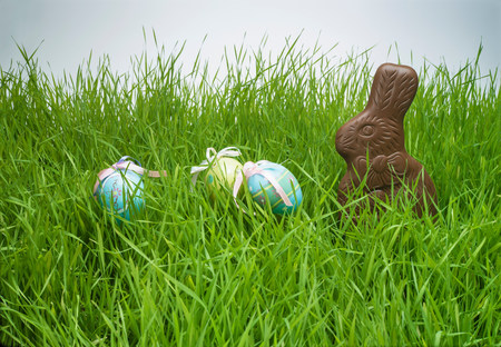 Easter eggs and chocolate bunny hiding in grass LANG_EVOIMAGES