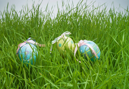obscuring: Decorative easter egg hiding in grass