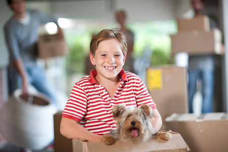 pooches: Boy moving house with dog in box
