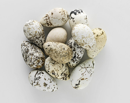 Pile of old speckled eggs
