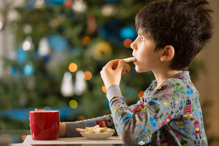 Boy eating Christmas cookies LANG_EVOIMAGES