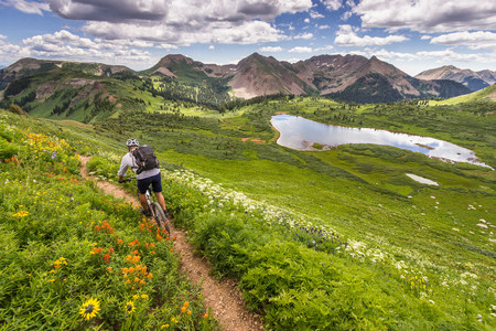 way out: Mountain biker on green trail