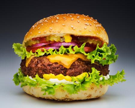 Burger LANG_EVOIMAGES