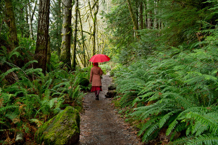 walking paths: Woman with umbrella walking in forest