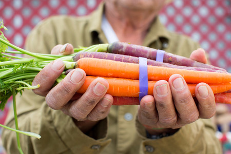 Man holding carrots outdoors LANG_EVOIMAGES