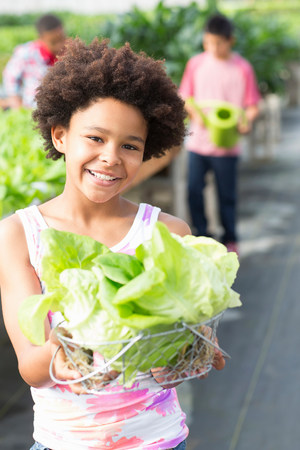 age 10 12 years: Girl holding lettuce in nursery